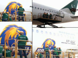 Karachi Kings logo on PIA airplanes