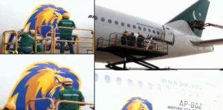 Karachi Kings logo on PIA airplanes