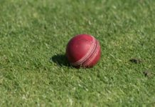Update on COVID-19 and the Irish cricket season