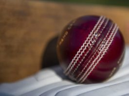 ECB: Somerset pitch sanction delayed until next County Championship season
