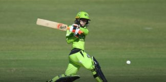 Sydney Thunder: Haynes selected for New Zealand series