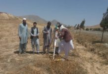 ACB: Construction work of Maidan Wardak cricket stadium has started