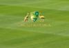 Cricket Austraila: Rebel WBBL|06 tickets on sale, fixture adjusted