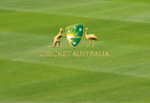 2019-20 Australian Cricket Census released