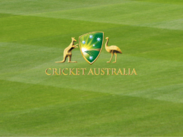 2019-20 Australian Cricket Census released