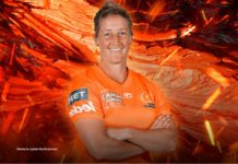 Perth Scorchers to be led by Devine intervention