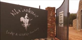 Cricket Namibia: Run for Tourism - #EaglesChallenge