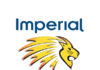 Imperial Lions and Beyers Chocolate promises to add a chocolatey flavour to your next cricket match experience