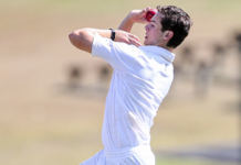 Auckland Cricket: Harrison awarded ACES contract