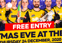 Cricket Wellington: Christmas Eve at the Basin