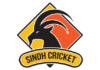 PCB: Sindh fined for maintaining slow over-rate