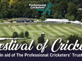 PCA: Celebrate this summer at the Festival of Cricket