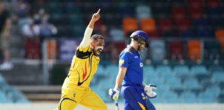 Cricket PNG: Isolated Barra