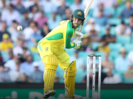 Adelaide Strikers: Carey called for West Indies tour