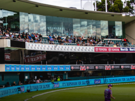 The Flying Colours Group signs on with Cricket Tasmania and the Hobart Hurricanes