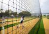 Cricket Australia: Play Cricket month kicks off across Australia