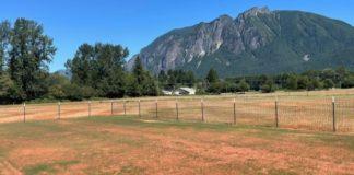 USA Cricket: New Major League Cricket center established in Seattle